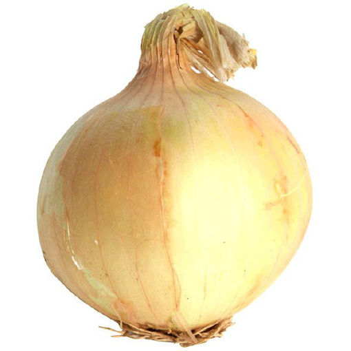 Picture of Yellow Onions