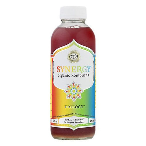 Picture of GTs Synergy Organic Kombucha Trilogy - 16 Fl. Oz.