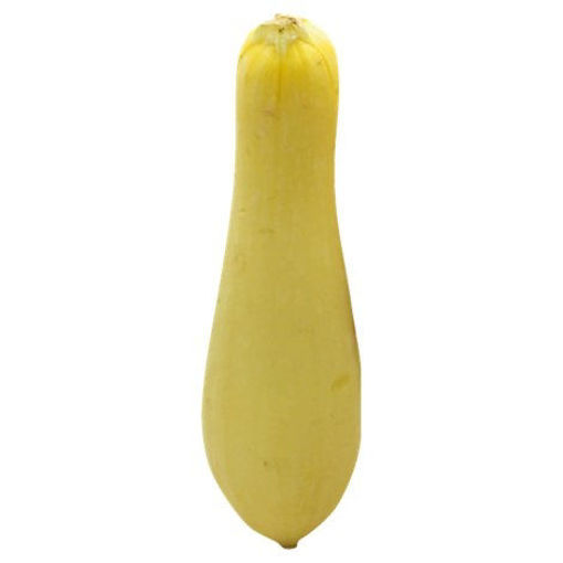 Picture of Squash Yellow Organic