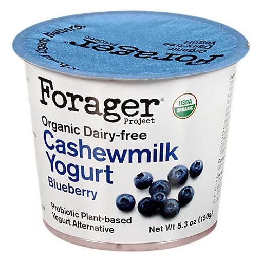 Picture of Forager Project Organic Yogurt Alternative Cashewmilk Dairy Free Blueberry - 5.3 Oz