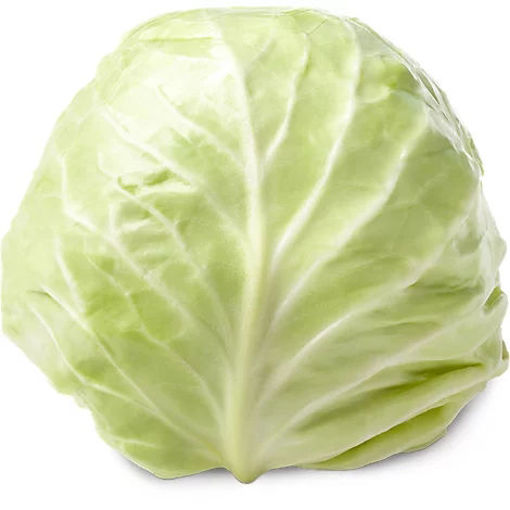 Picture of Organic Green Cabbage