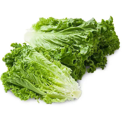 Picture of Organic Green Leaf Lettuce
