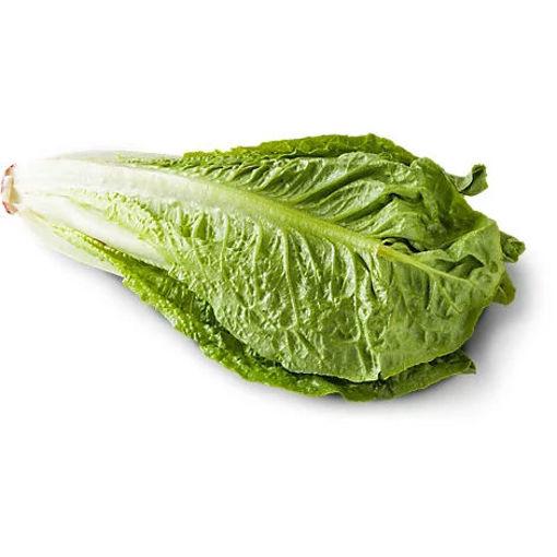 Picture of Lettuce Romaine Organic