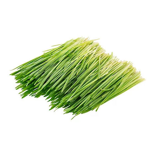 Picture of Wheat Grass Organic Prepacked - 4 Oz